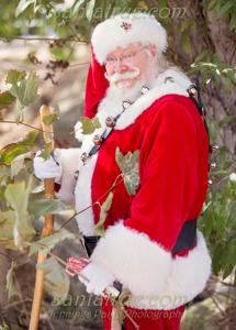 Traveling Santa True